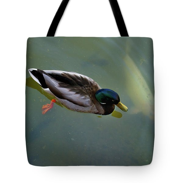 Tote Bag featuring the photograph Mallard And Carp by Ron Cline