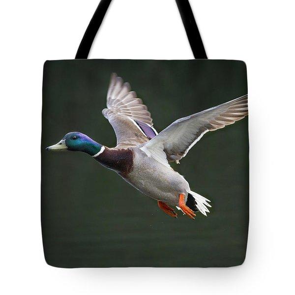 Mallard Drake In Flight Tote Bag