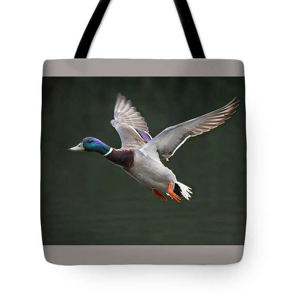 Mallard Drake In Flight Tote Bag
