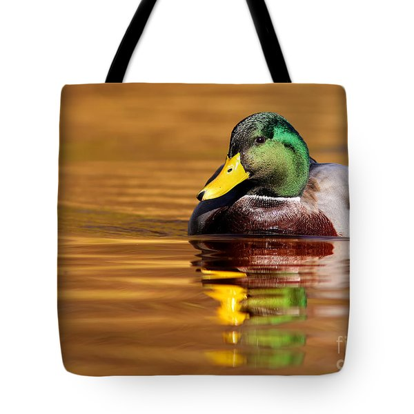 Mallard Drake In The Golden Water Tote Bag by Mircea Costina Photography