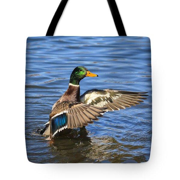 Mallard Drake In The Water Tote Bag