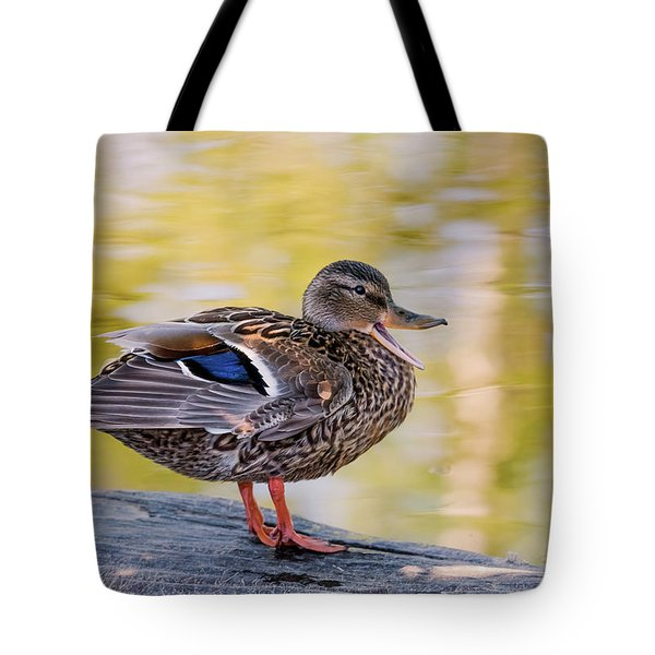 Tote Bag featuring the photograph Mallard Duck by Kathy King