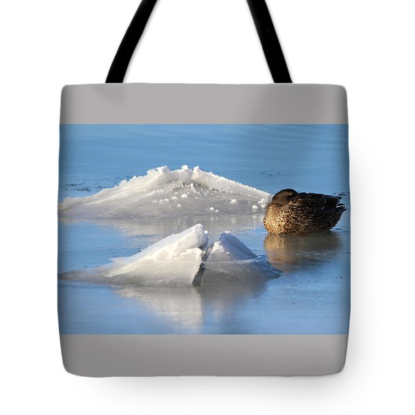 Mallard Duck Mount Sinai New York Tote Bag