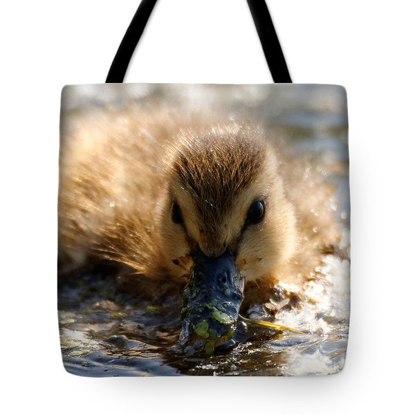 Tote Bag featuring the photograph Mallard Duckling by Sue Harper