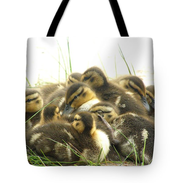 Tote Bag featuring the photograph Mallard Ducklings by Angie Rea