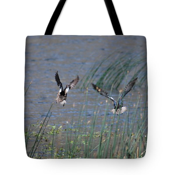 Mallard Ducks - Nelson Resevior White Mountains Tote Bag by Donna Greene