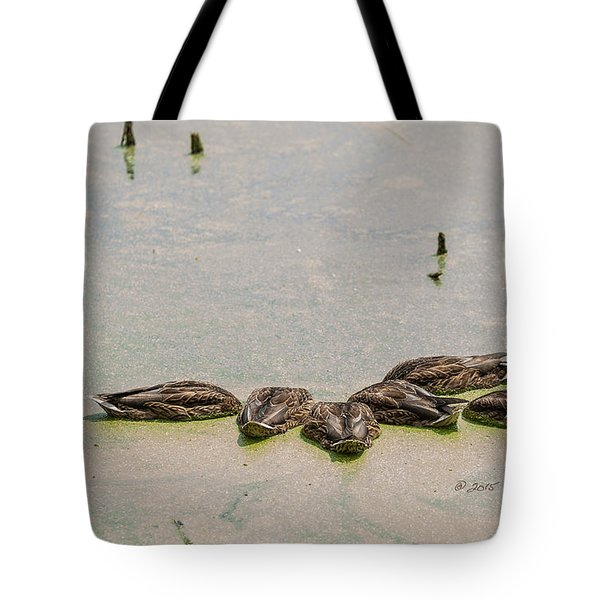 Tote Bag featuring the photograph Mallard Fine Dining by Edward Peterson