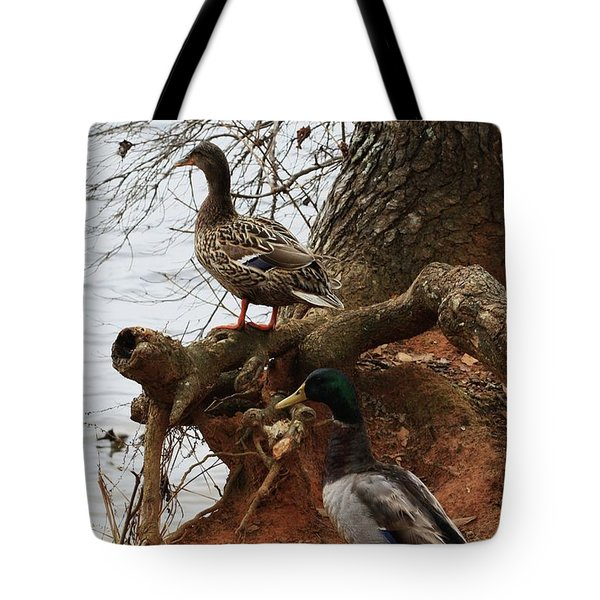 Tote Bag featuring the photograph Mallard by Kim Henderson