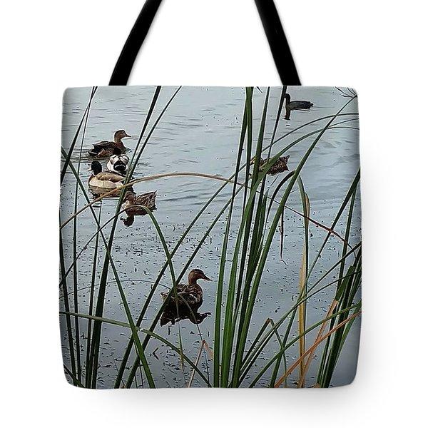 Mallard Migration Tote Bag