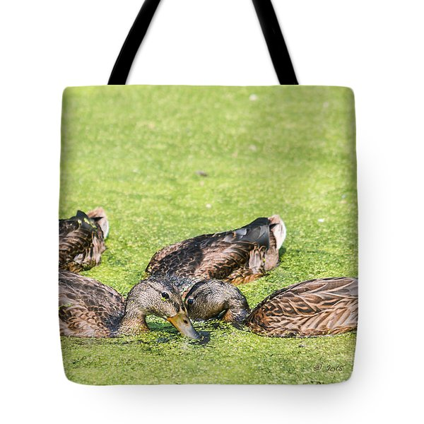 Tote Bag featuring the photograph Mallards Coming Up For Air by Edward Peterson