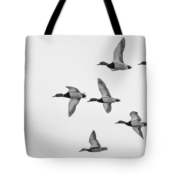 Tote Bag featuring the photograph Mallards by Dan Traun