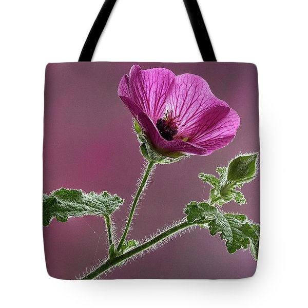 Mallow Flower 3 Tote Bag