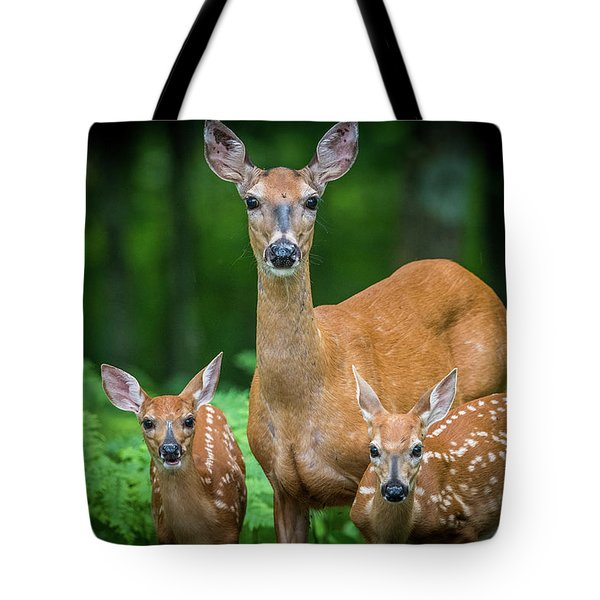 Mama And Fawns Tote Bag