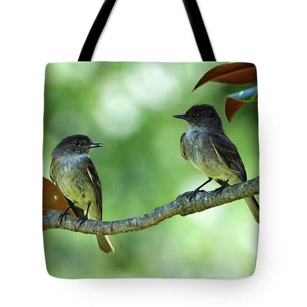 Mama And Papa Kingbird Tote Bag