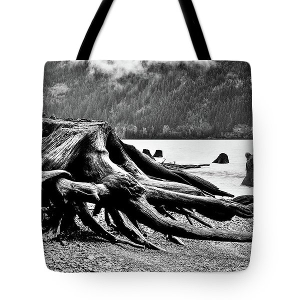 Mama Bear And Her Cub Tote Bag by Marius Sipa