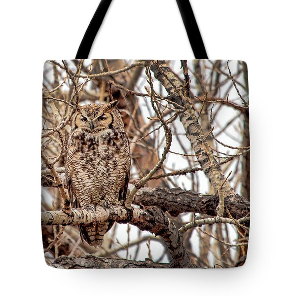 Mama Owl In Camo Tote Bag