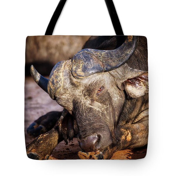Tote Bag featuring the photograph Mama Said There'd Be Days Like This by Rick Furmanek
