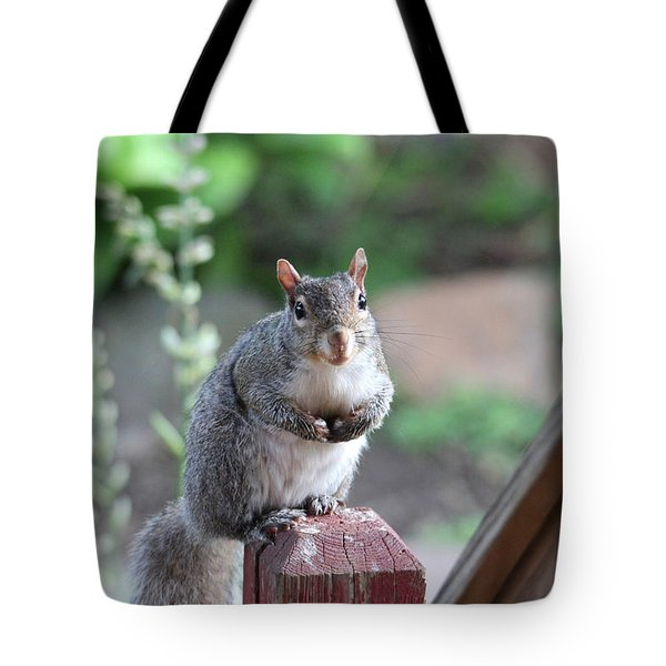 Mama Squirrel Tote Bag