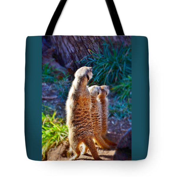 Tote Bag featuring the photograph Mama What Is That by Diane Alexander