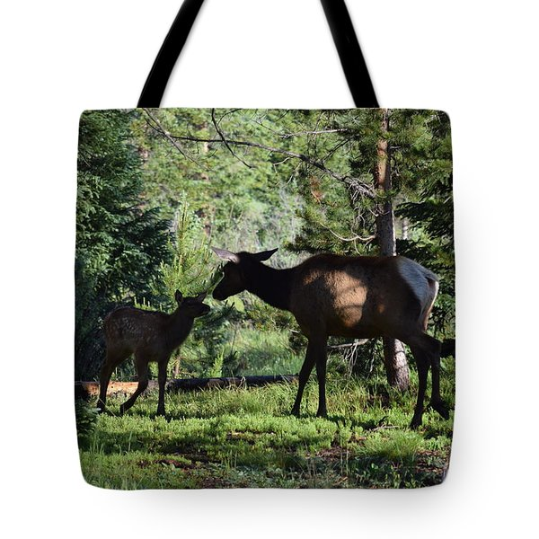 Tote Bag featuring the photograph Elk Calf - Mother Rmnp Co by Margarethe Binkley