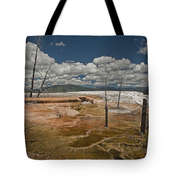 Tote Bag featuring the photograph Mammoth by John Gilbert