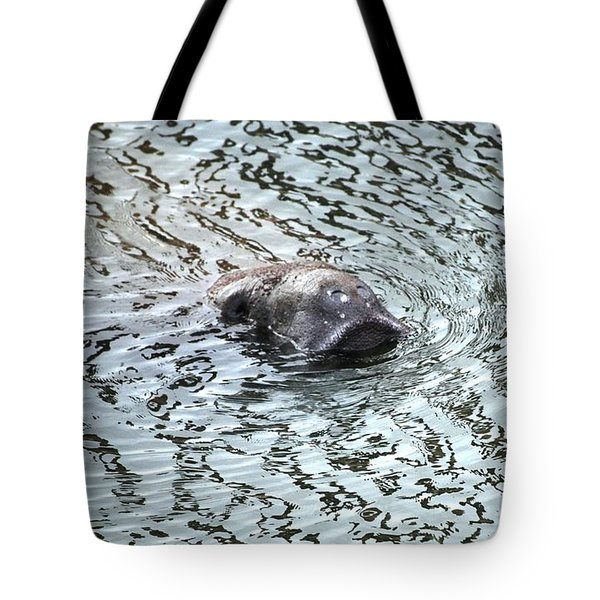 Manatee 2 Tote Bag by Angela Murray