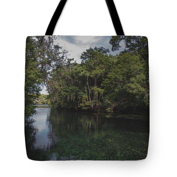 Manatee Springs Tote Bag