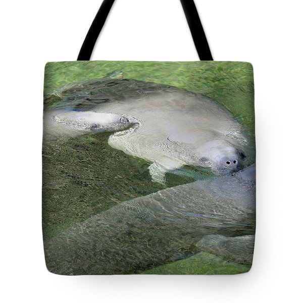 Tote Bag featuring the photograph Manatees At Blue Springs by Bradford Martin