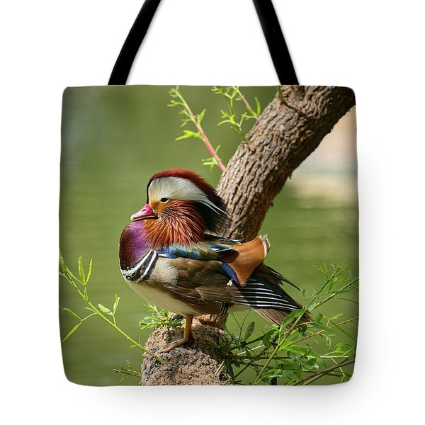 Mandarin Duck On Tree Tote Bag