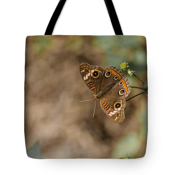Mangrove Buckeye Butterfly Tote Bag