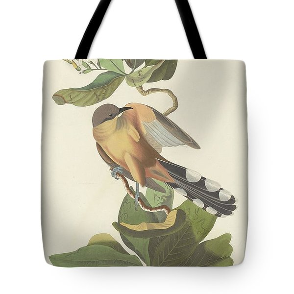 Mangrove Cuckoo Tote Bag by Rob Dreyer
