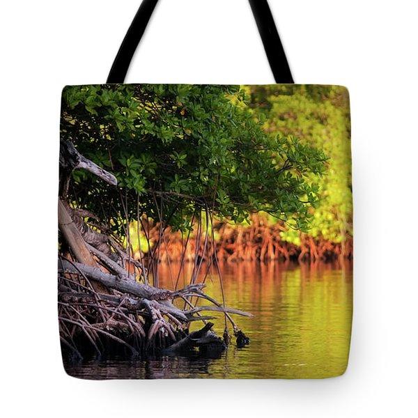 Mangroves Of Roatan Tote Bag by Doug Sturgess