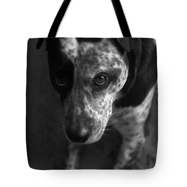 Tote Bag featuring the photograph Mans Best Friend II by Suzanne Powers