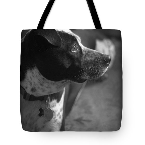 Tote Bag featuring the photograph Mans Best Friend IIi by Suzanne Powers