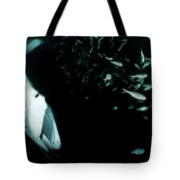 Manta Frenzy Tote Bag