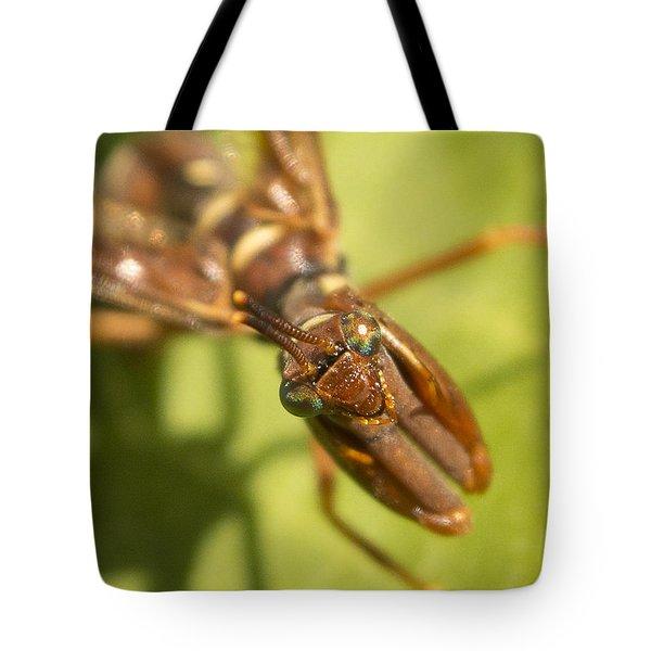 Mantid Fly Tote Bag