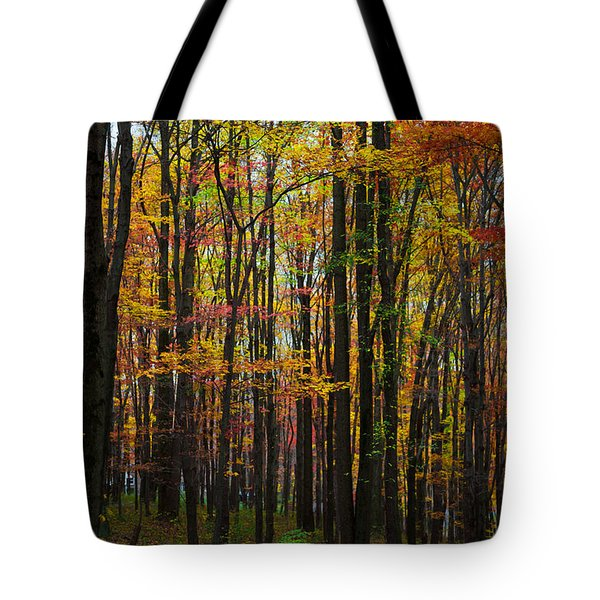 Tote Bag featuring the photograph Many Colors Of Autumn by April Reppucci