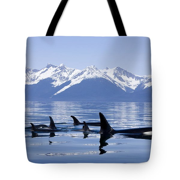 Many Orca Whales Tote Bag