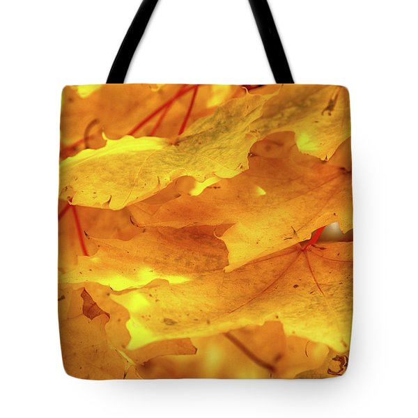 Tote Bag featuring the photograph Maple Blaze by Marie Leslie