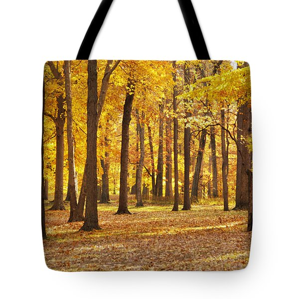 Maple Glory Tote Bag by Francesa Miller