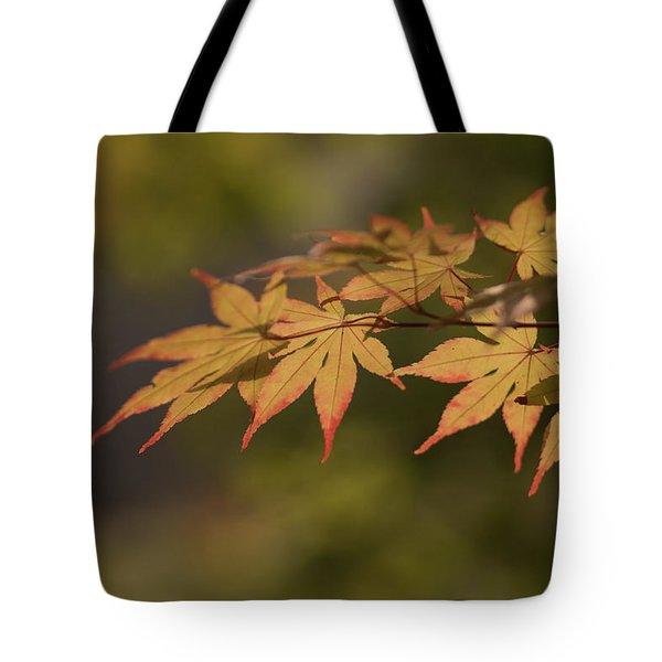 Maple Tote Bag