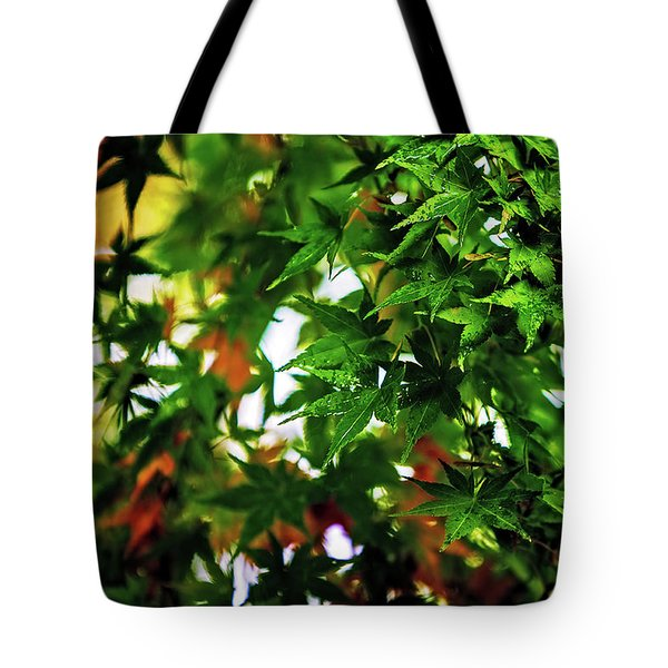 Maple In The Mist Tote Bag