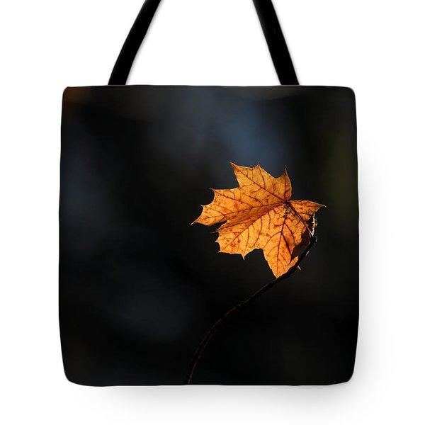Maple Leaf Setauket New York Tote Bag