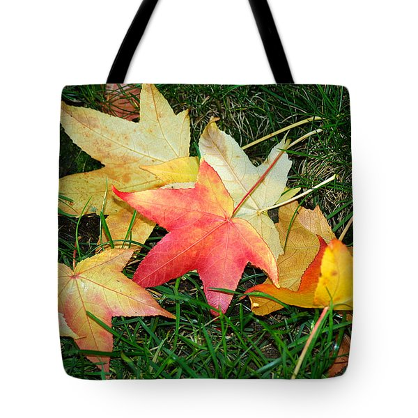 Maple Leaves Fallen On Green Grass Tote Bag