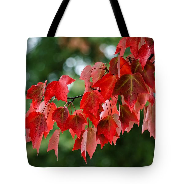 Maple Red Tote Bag