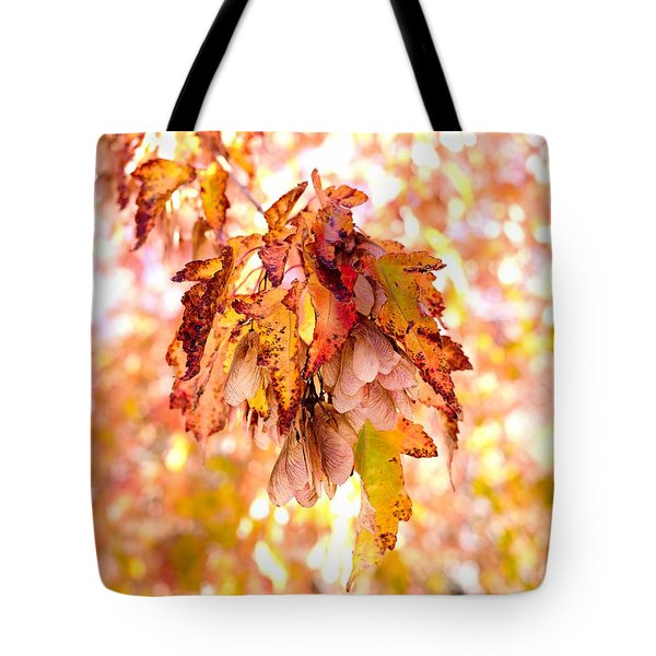 Tote Bag featuring the photograph Maple Tree In Autumn by Dutch Bieber