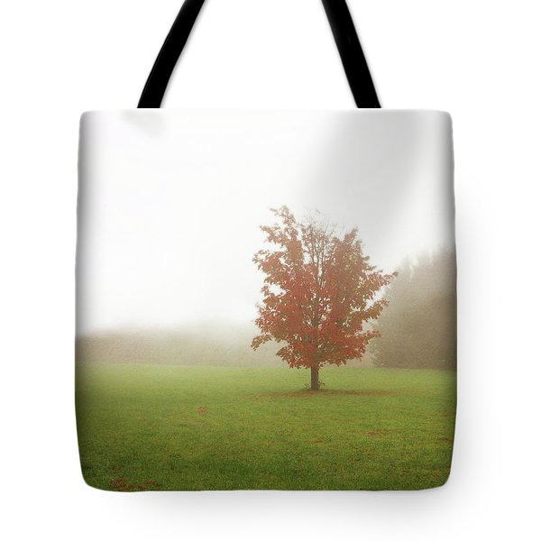 Tote Bag featuring the photograph Maple Tree In Fog With Fall Colors  by Brooke T Ryan