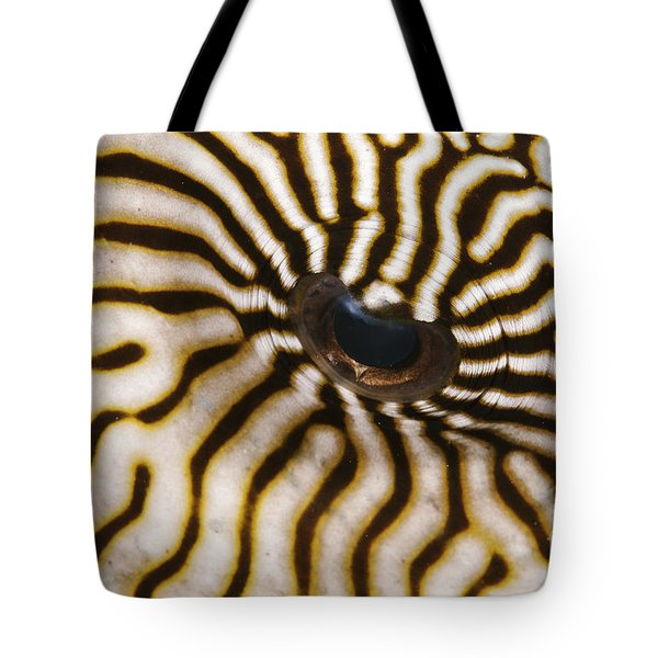 Mappa Pufferfish Eye Tote Bag by Steve Rosenberg - Printscapes