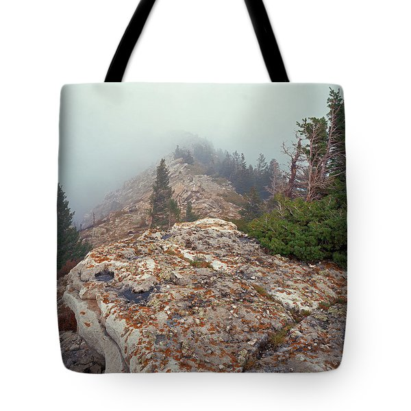 Marble View Fog-sq Tote Bag