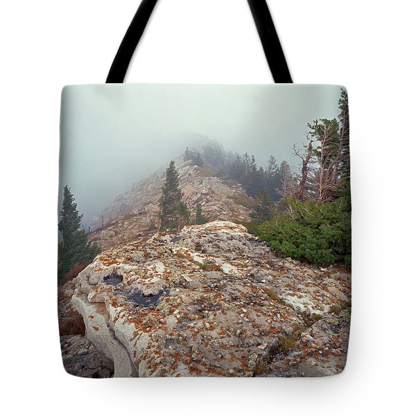 Marble View Fog Tote Bag